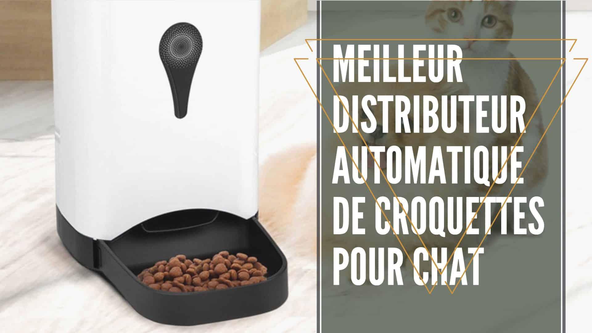 Meilleur Distributeur Automatique De Croquettes Pour Chat