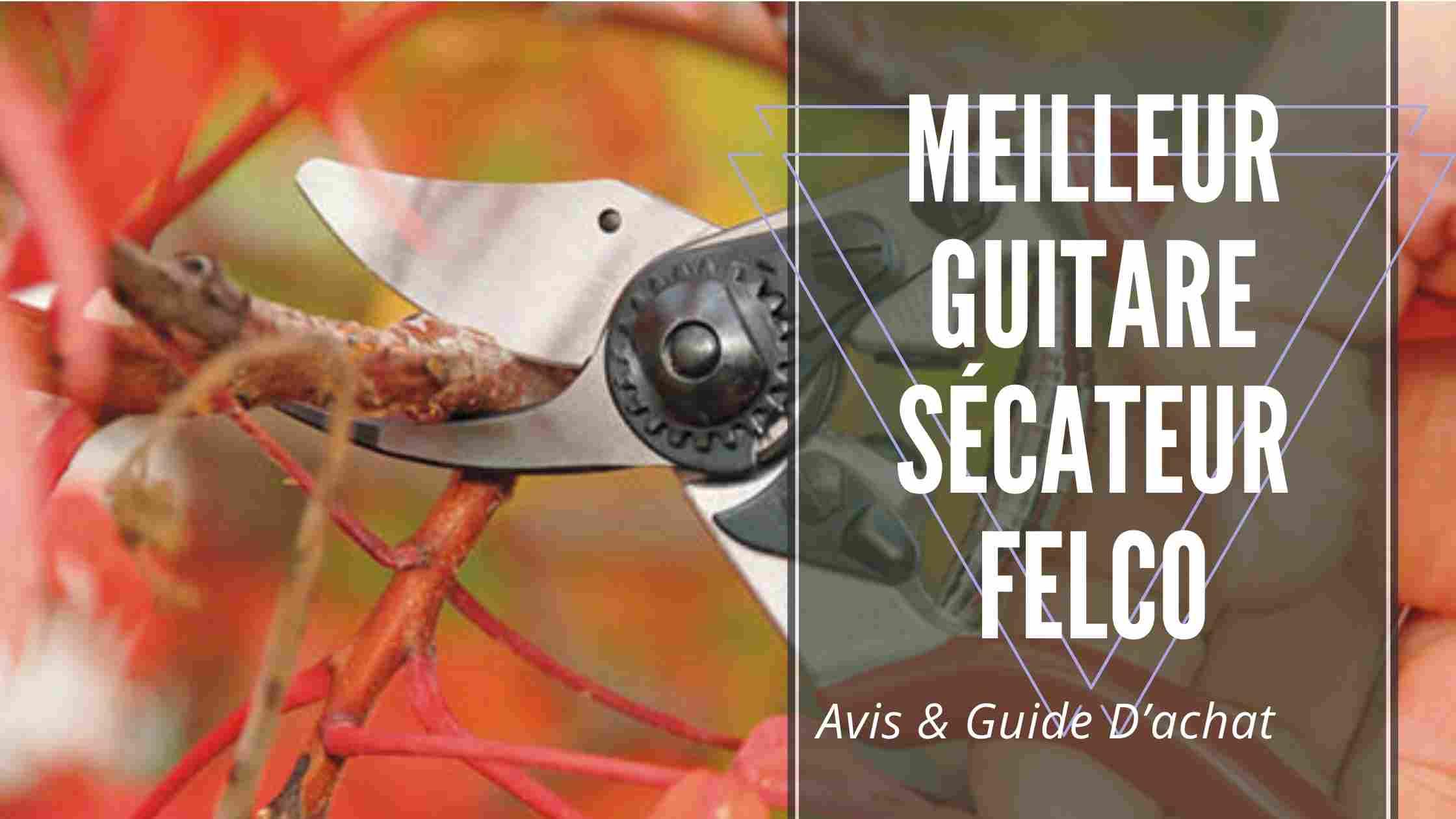 Meilleur Guitare Sécateur Felco